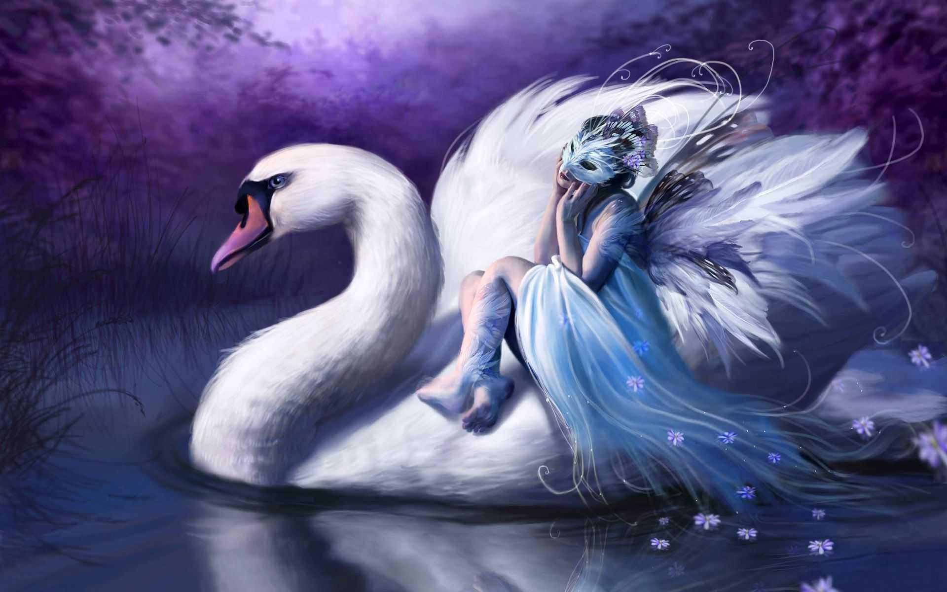 zwdia-kiknos-angel