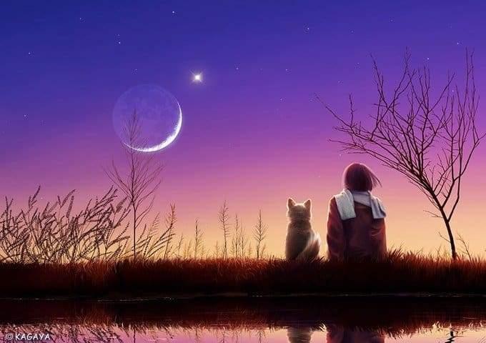 ζωδια-zwdia-νεα-σεληνη-zodia-astrologia